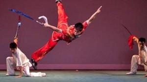 Wushu-Kung Fu